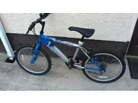 Blue and Silver youths bicycle