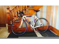 Trek Road/Race Bike in Perfect Order Size L/23