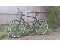 Specialized Crossroad hu8 Hybrid Bike frame 61cm/wheels 700 and gears 8 speeds