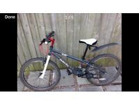 "Dawes 24"" bike"
