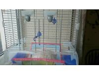 Budgie cage for one bird