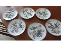 Spode Garden Bird set of six plates