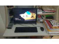 "Lenovo C Series C20 19.5"" All-in-One Desktop Computer"