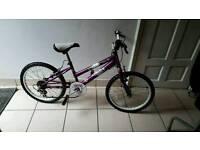 Cheap Girls Bike