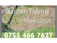Garden Tidying