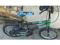 Kids RALEIGH bike