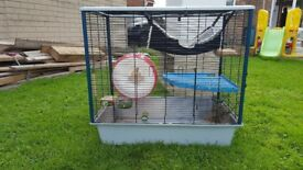 Chinchilla cage for sale