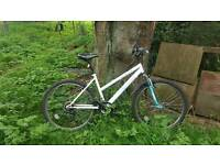 Sturdy and comfy ladies mountain bike