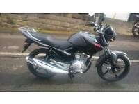 Yamaha YBR 125 2012 62 Plate Immaculate Genuine low miles