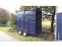 Single horse trailer