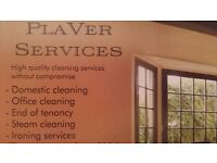 *PlaVer services* - domestic cleaning, plumbing services, carpenter, tiling, flooring