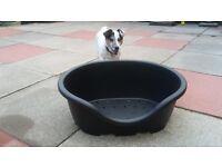 Black dog bed