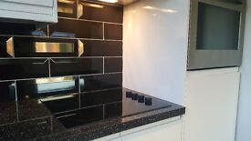 1 bed refurbished executive flat in Pontcanna / Canton unfurnished and available now