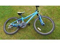 "Boys Mountain Bike Barracuda 24"" wheels"