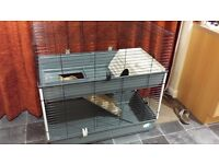 Ferplast two level guinea pig/rabbit cage