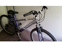 Magna Envy Bike