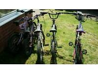 Assorted Used Bikes-different sizes