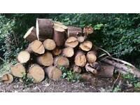 Fire wood logs burning wood