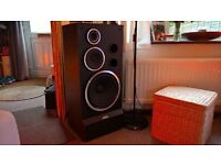 ALTUS 300 loudspeakers x 2. Excellent for home parties . Big and powerful enough for small clubs.