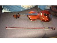 Student stentor violin