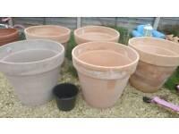 Extra large terracotta gardrn pots