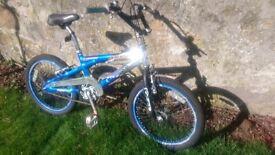 Kids Stunt Bike.