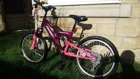 Girls Raleigh Extreme mission bike
