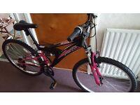 NEW bike Taser Flite for woman for sale.