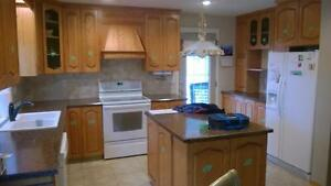 high quality kitchen cabinet painting cabinets