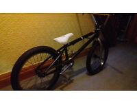 BMX bike plus accessories