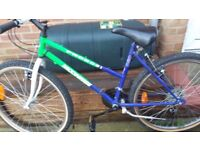 bike with 24 wheels suitable for older girl or younger teenager.
