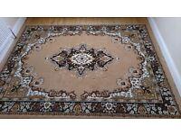 Large patterned Brown rug.