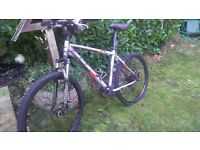 durable mountain bike for sale *flexible with price,disk brakes*