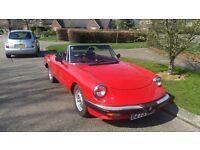 Classic Sports Car - 1985 Alfa Romeo Spider 2.0 For Sale