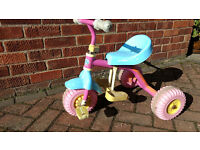 Child's Fifi and The Flowertots Tricycle / Trike