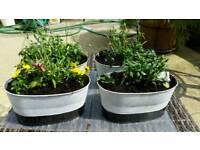Garden ornamental planter