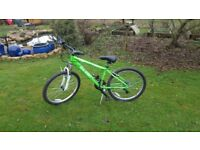 Green Raleigh 21 gear bike