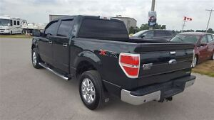 2013 Ford F-150 XTR 4X2 | Tow Pkg | Rear Camera Kitchener / Waterloo Kitchener Area image 9