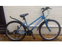LADIE'S PROFESSIONAL ASPEN MOUNTAIN BIKE WITH LOCK