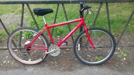 """18 Speed RALEIGH Mountain Bike Bicycle. Guaranteed & Fully Serviced. 17"""" Frame"""
