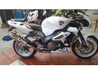 Aprilia tuono,Rsv,muscle bike,1000,sp1,vtwin,tl1000