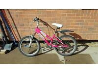 Raleigh chloe mountain bike