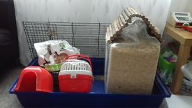cage, transport cage and various pieces for £15