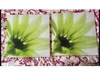 Green canvas prints