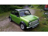 Classic mini 998 one of a kind viper green