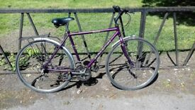 "RALEIGH Road Town Bike Bicycle For Sale. Fully Serviced & Guaranteed. 21"" Frame. Mudguards"