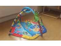 Baby Play Mat with Arch