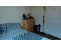 GREAT DOUBLE ROOM IN TURNPIKE LANE - LIVING ROOM & GARDEN