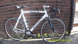 AMMACO SPRINT 6000 RACING BIKE 14sp LIGHTWEIGHT LARGE 23in/58cm ALLOY FRAME EXC COND USED 3 TIMES