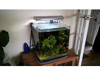 Aqua One Fish tank Aqua Nano 40 Tropical Aquarium 55 Litre starter
